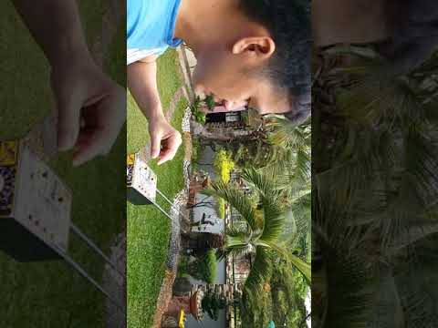 Metal detector gold detector treasure hunter philippines long range locator part 2