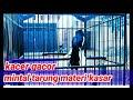 Kacer Gacor Mintal Tarung Materi Kasar  Mp3 - Mp4 Download