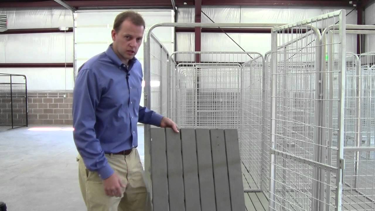 Pro Multiple Kennel System For Multiple Dogs Youtube