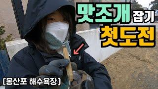 몽산포에 맛조개 잡으러가요~ 맛조개 갯벌체험 첫도전!