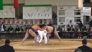 20170503 全国大学選抜相撲宇佐大会 団体決勝T 準決勝 thumbnail