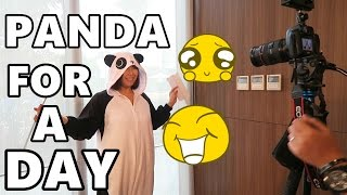 PANDA for a Day! (August 2, 2016) - saytioco
