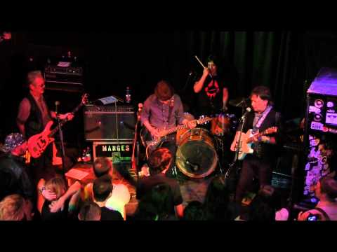 The Flamin' Groovies: live at Arena Wien am 22.06.2015