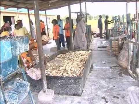 Eye on Niger - Nigeria's Agriculture Hub