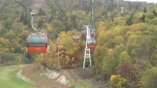 錦秋到来! 小樽−定山渓線画像