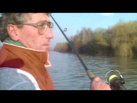 Sandre au mort manie en Seine Maritime - Zander Fishing