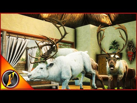 Reindeer & Moose Hunt For The Lodge!