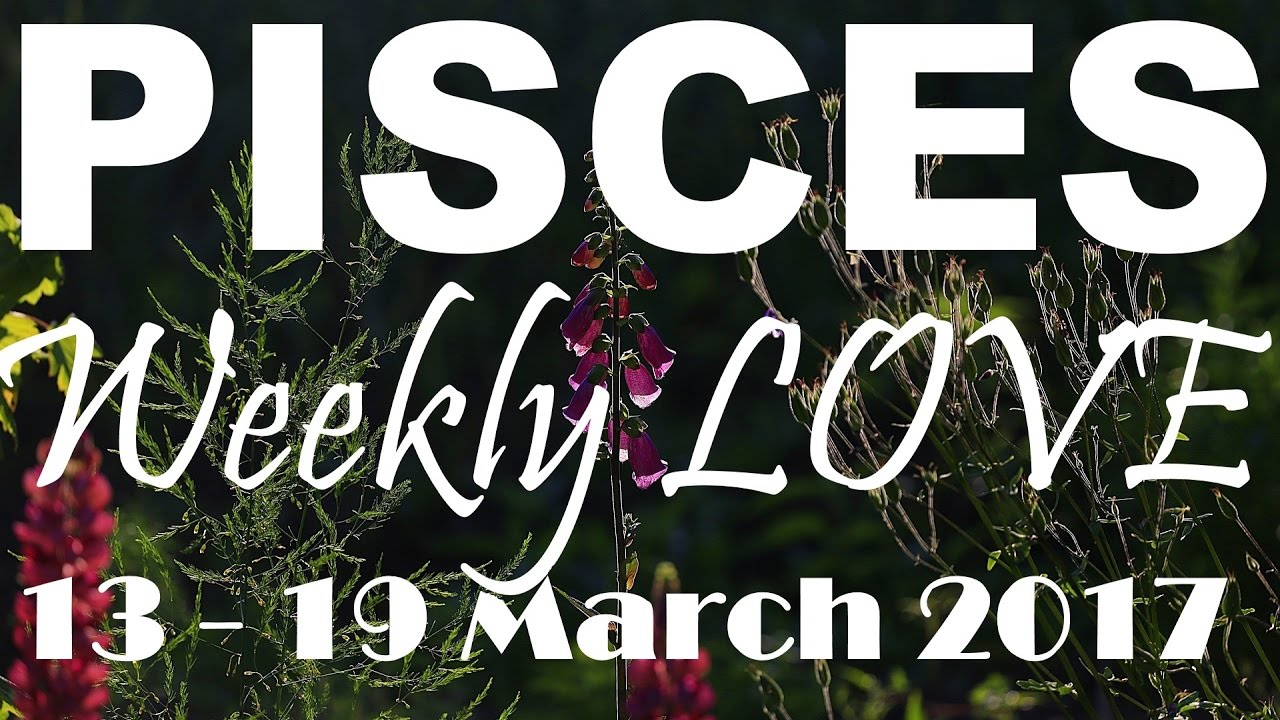 pisces weekly 13 to 19 love tarot