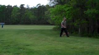 Focus K9 - Dog Training - Board & Train Obedience Course