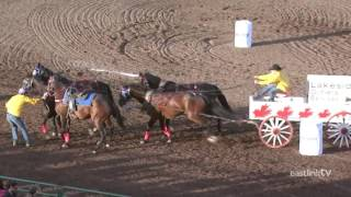 Stompede: A Day in the Life of WPCA Chuckwagon Driver Chad Harden on Eastlink TV Grande Prairie