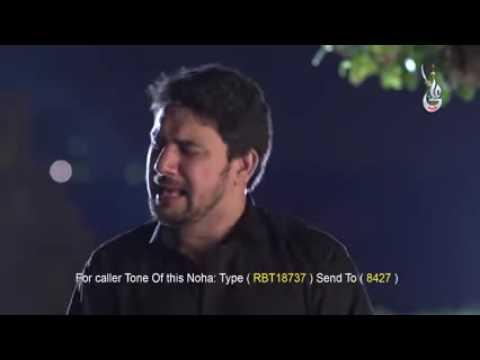 ABBAS Kahan Ho Bhai   FARHAN ALI WARIS New Exclusive Noha 2016   YouTube