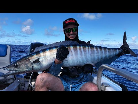 Fishing The Coral Sea - Big Cat Reality 2019