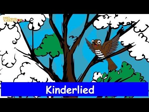 Kuckuck, kuckuck, ruft's aus dem Wald - Kinderlied -Sing mit Yleekids