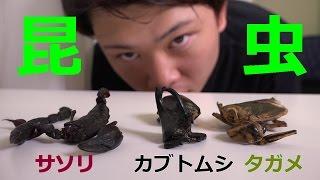 【閲覧注意】サソリ・カブトムシ・タガメを虫嫌いが食べてみた!!