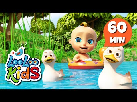 Cantec nou: Five Little Ducks - Learn English with Songs for Children | LooLoo Kids