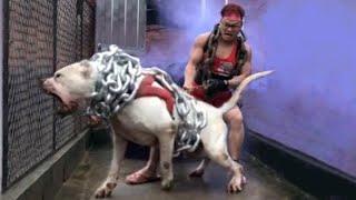 عندما يغضب كلب دوجو أرجنتينو .. انظروا ماذا فعل بأسد الجبال