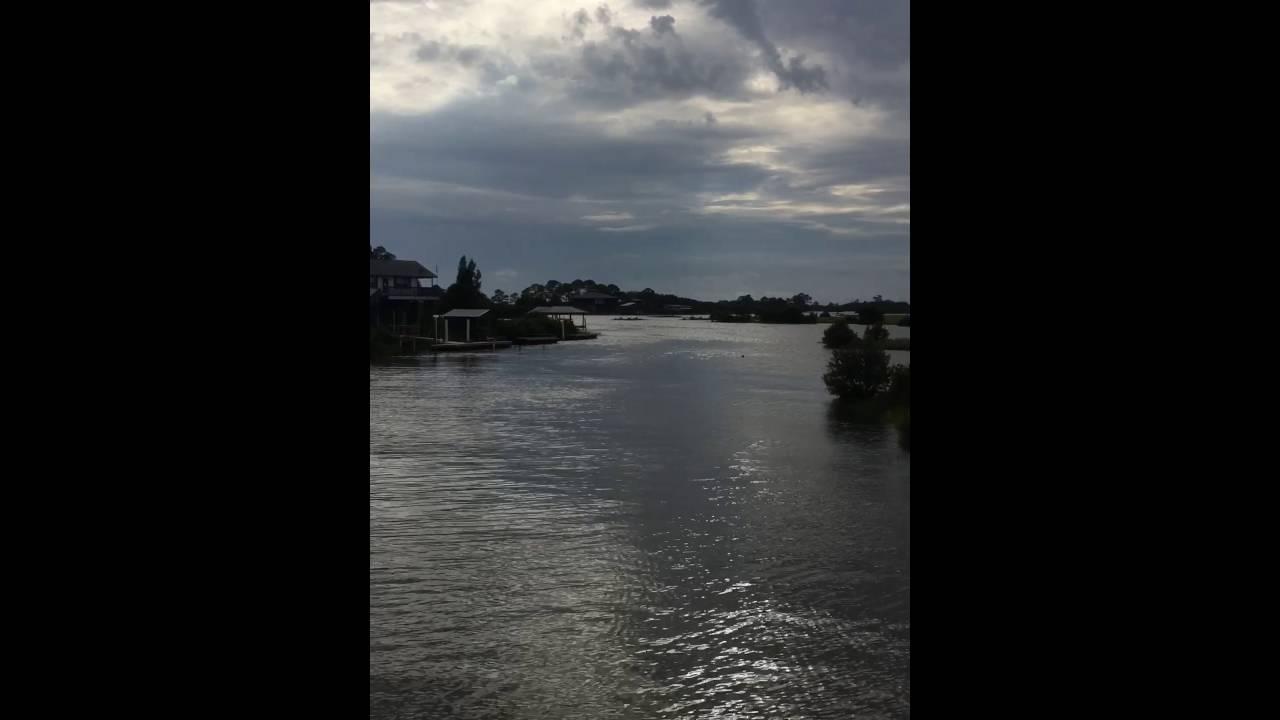 Cedar key florida fishing bridge youtube for Cedar key fl fishing