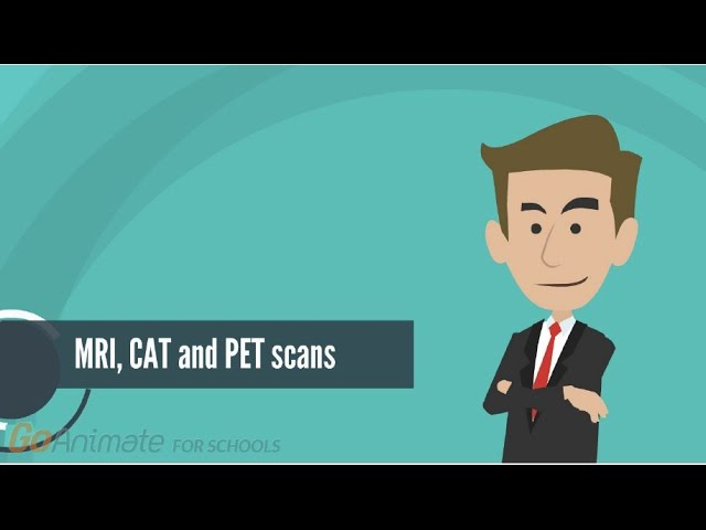 How do MRI, PET and CAT scans work?