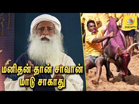 Isha Yoga Swamy Sadhguru Ji Speach About Jallikattu Ban and Protest