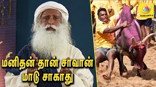 Isha Yoga Swamy Sadhguru Ji Speach About Jallikattu Ban and Protest
