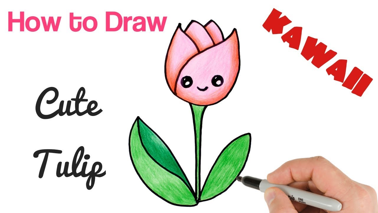 How To Draw Cartoon Flower Tulip Cute And Easy