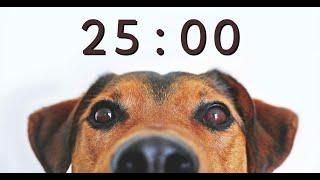 25 Minute Timer for School and Homework  Dog Bark Alarm Sound