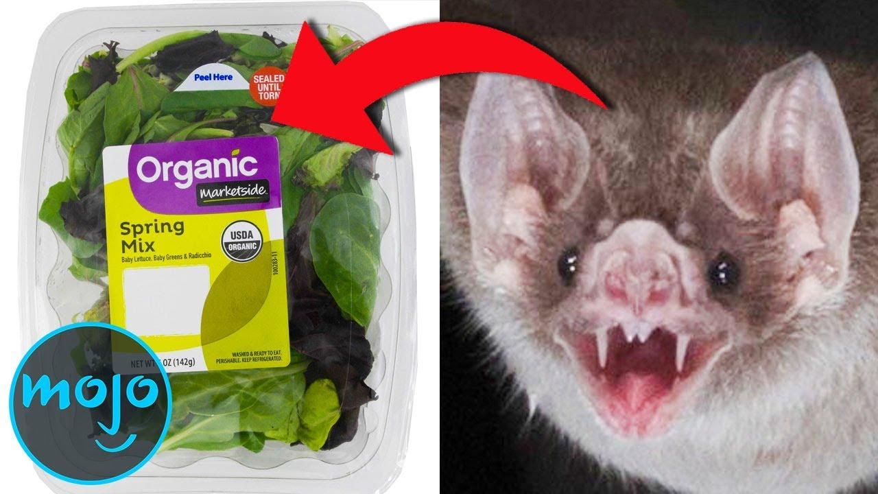 Download Top 10 Disgusting Food Recalls