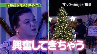 火曜よる8時57分『マツコの知らない世界』12月4日は、「クリスマスツリ...