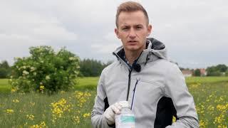 Demo Farma Rogów - Perenal 104 EC herbicydy do zwalczania chwastów jednoliściennych w rzepaku