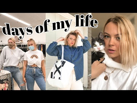 VLOG | new offwhite bag, thrifting with my sister, & franklin, our new kitten