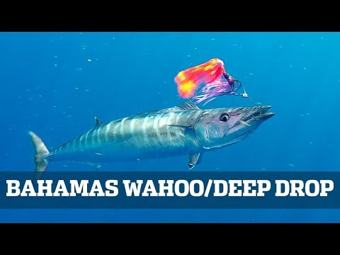 Florida Sport Fishing TV Bahamas Wahoo / Deep Drop Seminar
