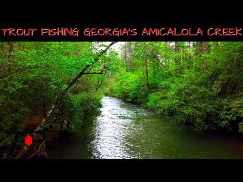 Trout Fishing Georgia's Amicalola Creek