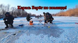 Ловля КАРАСЯ зимой В ТОЛПЕ РЫБАКОВ