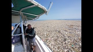 A sea of plastic: Shocking images show how bottles, bags and rubbish are choking our oceans