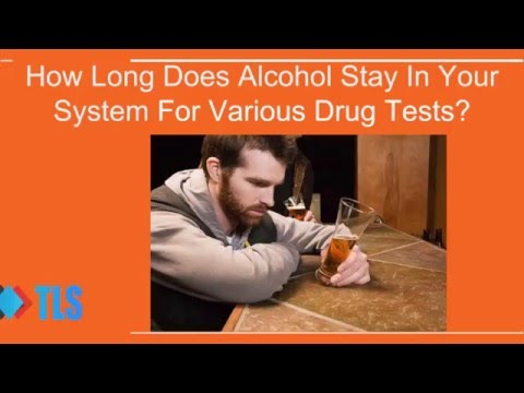 How Long Does Alcohol Stay In Your System For Various Drug Tests
