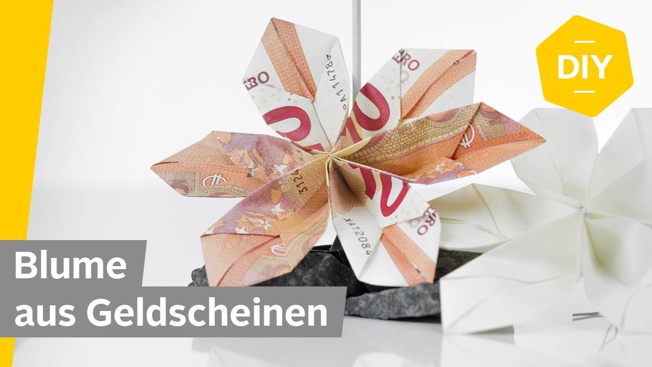 Geldscheine falten BLUME fr kreative Geldgeschenke