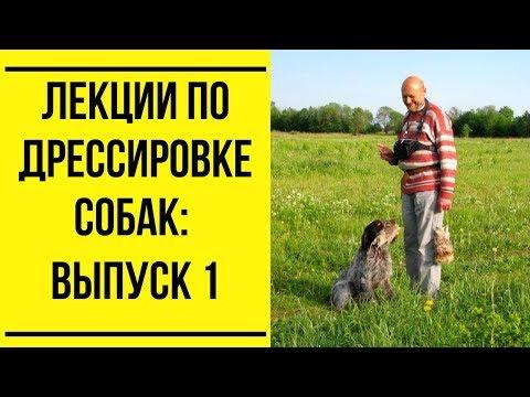 Лекции по дрессировке собак. Выпуск 1