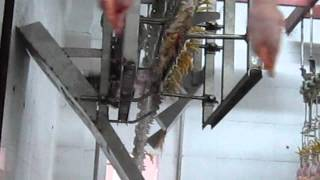 Chicken Sluaghter Machine|Poultry Slaughtering Production Line