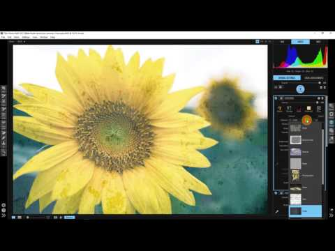 Spring Into Summer – Make Your Dull Summer Photos Shine with Blake Rudis