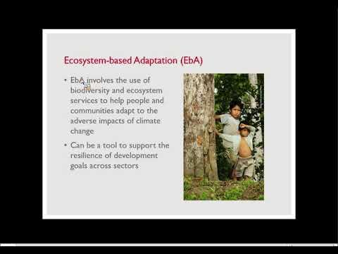 Adaptation Community Meeting: Ecosystem-based Adaptation for Development Results