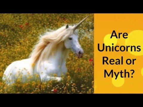 Myth or Real - About Unicorns