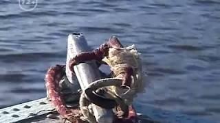 Главная рыбалка. Аптечка рыболова и первая помощь