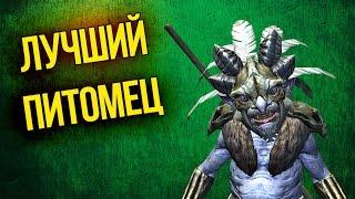 Skyrim Лучший Питомец Рьеклинг воин и лучник - Руководство  Как получить в напарники