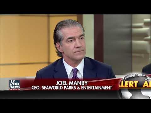 SeaWorld announces end to its captive orca breeding program