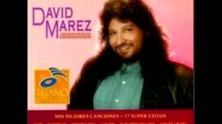 Brindemos Amigo - David Marez