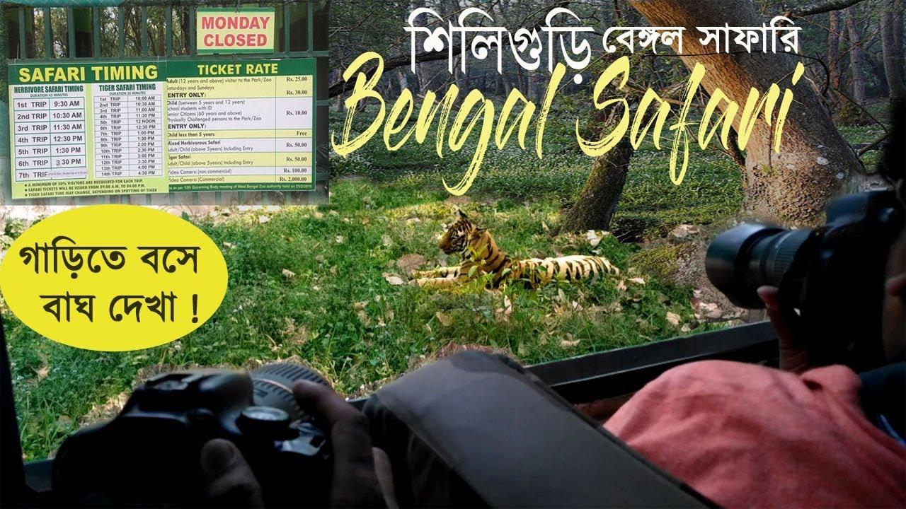 FIND A TIGER IN BENGAL SAFARI, SILIGURI, NORTH BENGAL