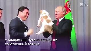 Каких собак дарили Путину
