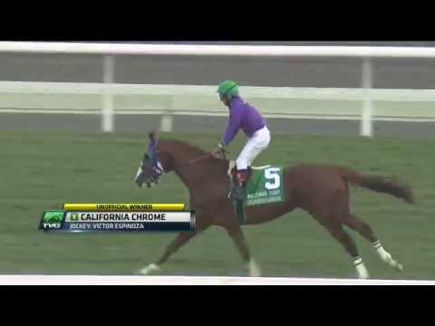 Top 30 Countdown - #2 Hollywood Derby (California Chrome)