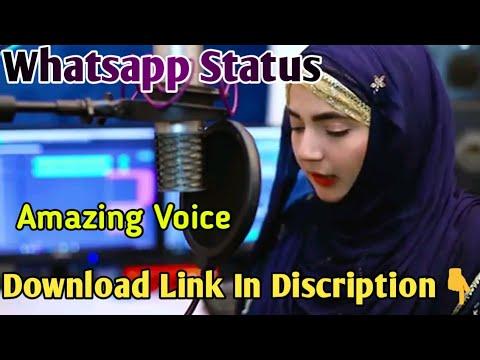 Amazing Naat Status | Heart Touching Status | SABIR STATUS