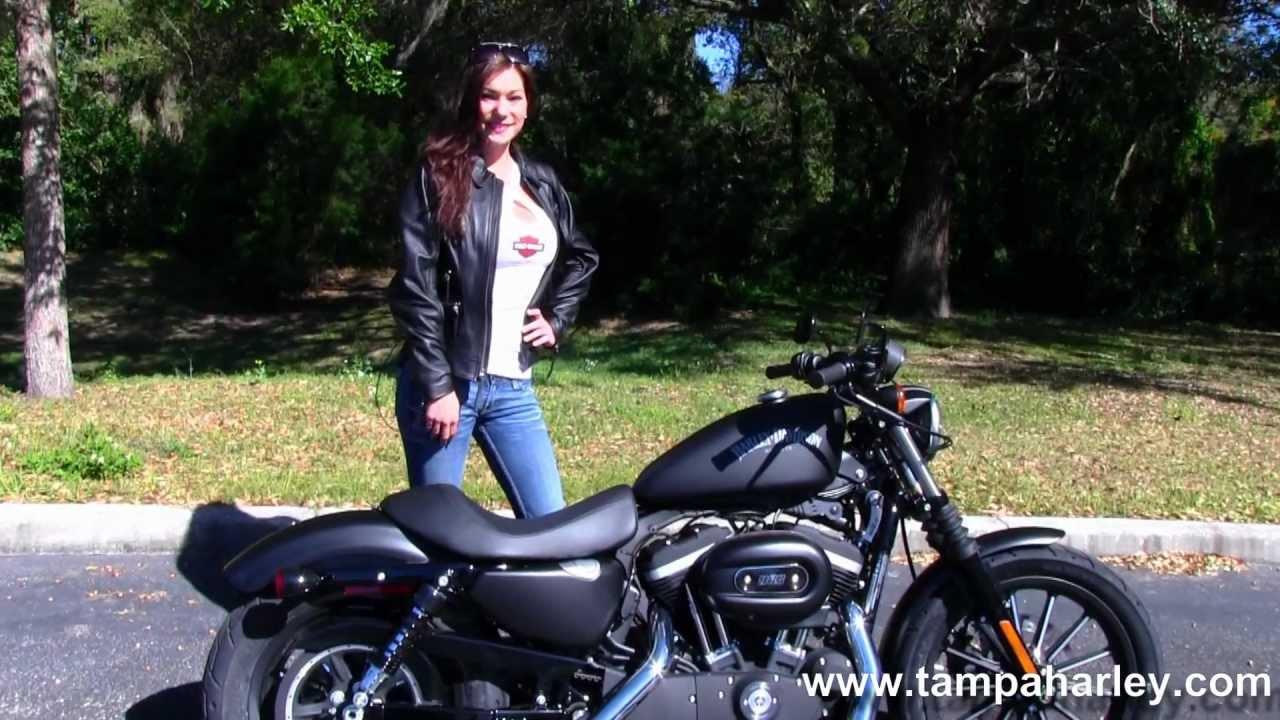 Harley Davidson  Iron Craigslist